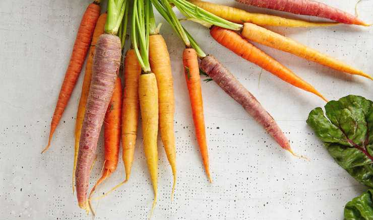 How Long Do Carrots Last? The How to Store Carrots Guide