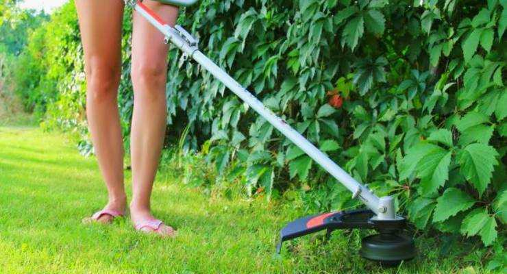 Weed Eater Won't Start - Top 10 Reasons and Guide