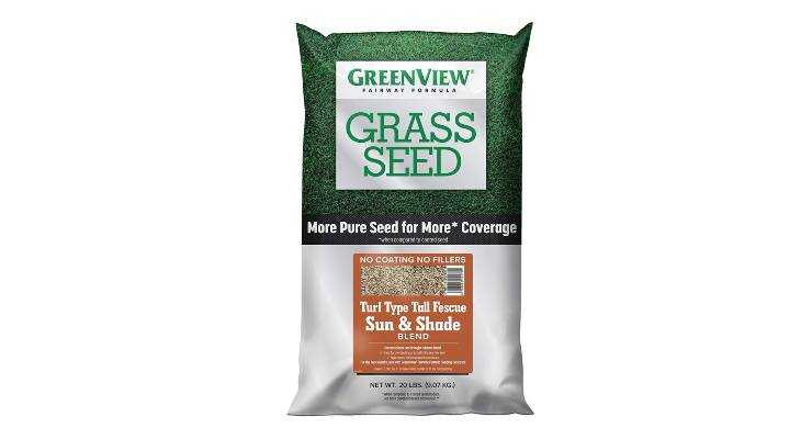 Turf-Type Tall Fescue seeds