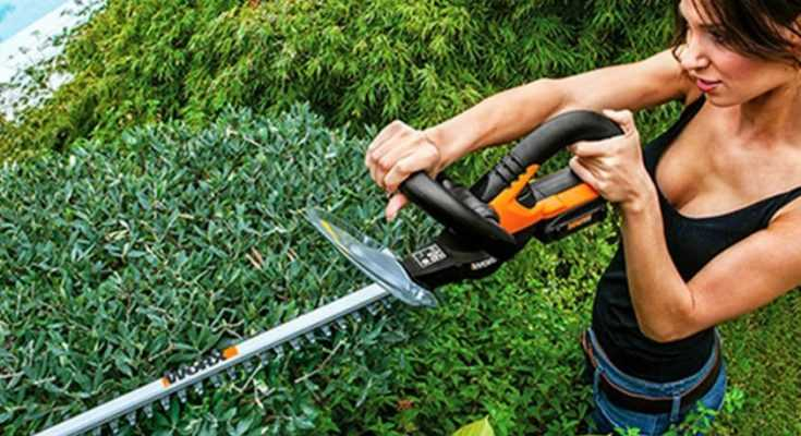 Best Hedge Trimmer Reviews for 2019 - Featured