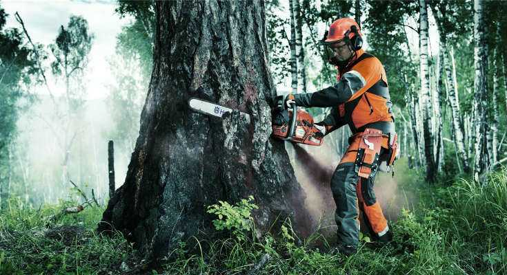 Best Chainsaw Chaps Reviews