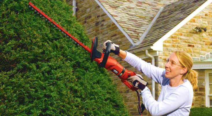 Best Electric Hedge Trimmer Reviews for 2018 - Featured