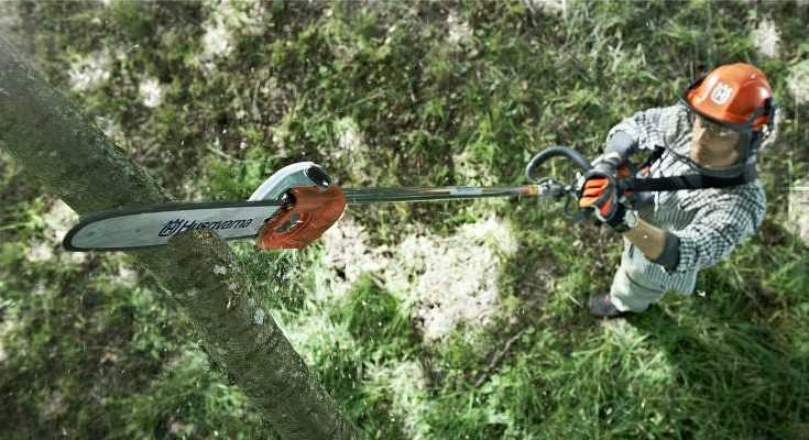 Best Electric Pole Saws 2020 - Reviews & Buyers Guide - Gardenlife Pro