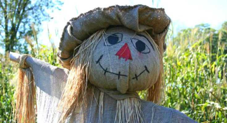 How to DIY Scarecrow